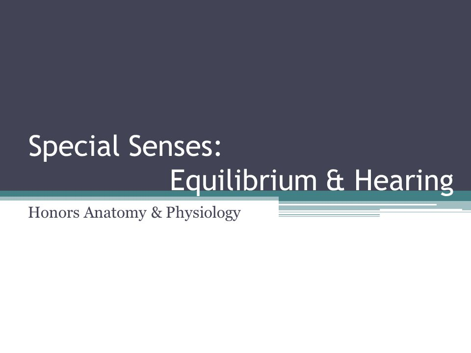 Special Senses: Equilibrium & Hearing Honors Anatomy & Physiology