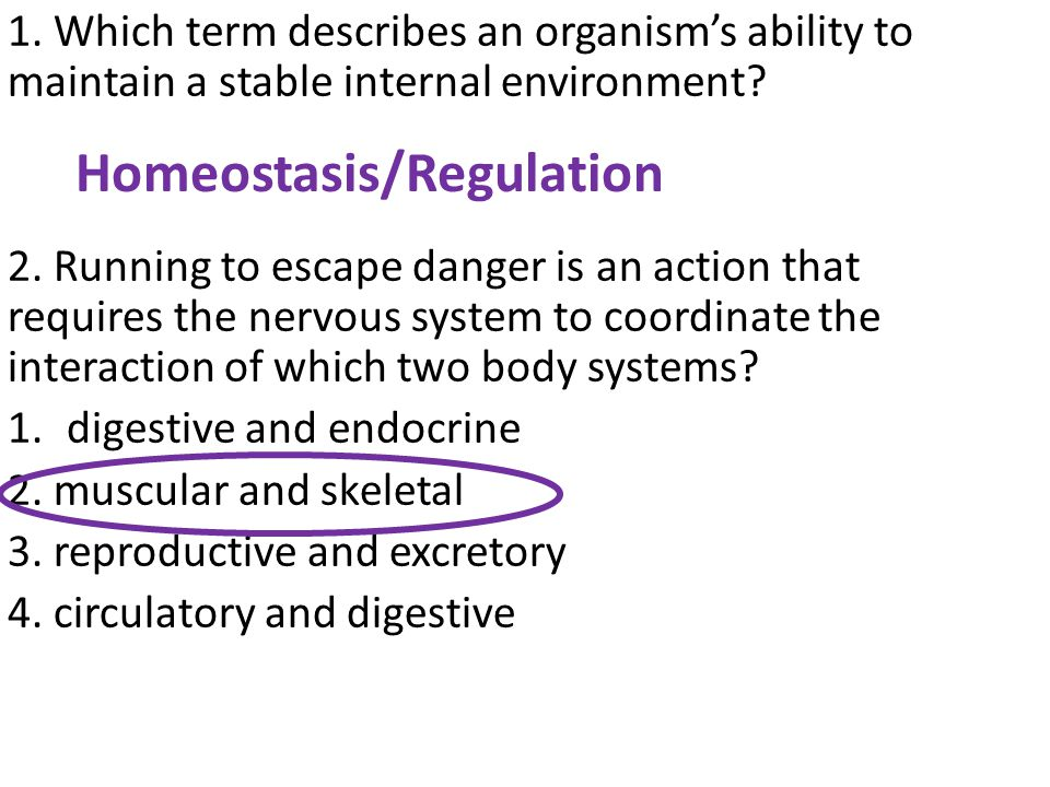 1.Which term describes an organism's ability to maintain a stable internal environment.