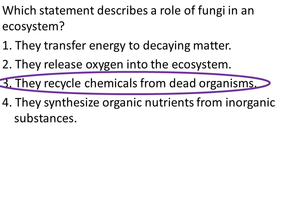 Which statement describes a role of fungi in an ecosystem.