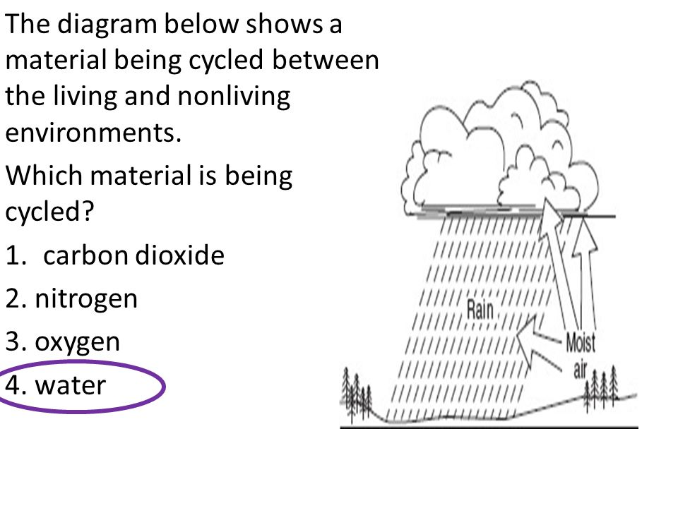 The diagram below shows a material being cycled between the living and nonliving environments.