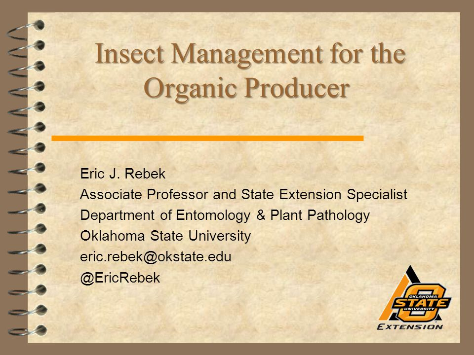 Insect Management for the Organic Producer Insect Management for the Organic Producer Eric J. Rebek Associate Professor and State Extension Specialist