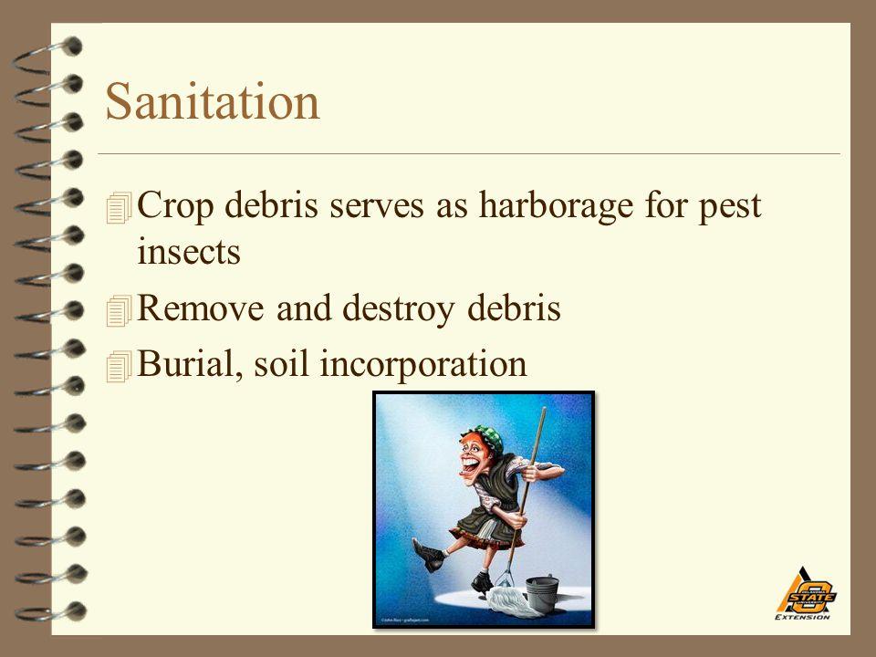 Sanitation 4 Crop debris serves as harborage for pest insects 4 Remove and destroy debris 4 Burial, soil incorporation