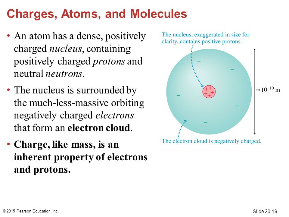 Slide 20-19 Charges, Atoms, and Molecules An atom has a dense, positively charged nucleus, containing positively charged protons and neutral neutrons.