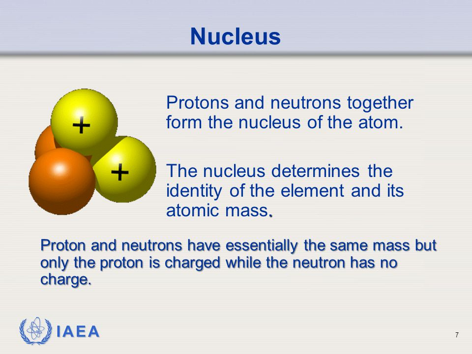 IAEA Nucleus Protons and neutrons together form the nucleus of the atom..