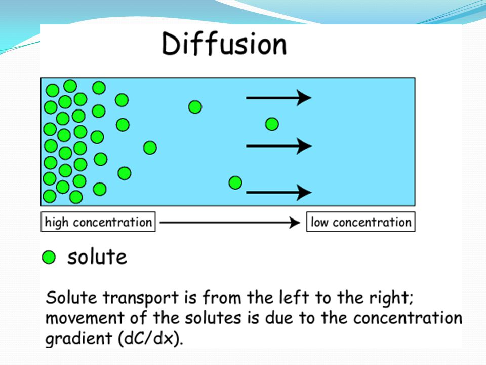 Osmosis The diffusion of water across a semipermeable membrane Goes from high concentration to low concentration The plasma (cell) membrane undergoes osmosis creating equilibrium in the cell Equilibrium is reached when both sides of the cell membrane are equal