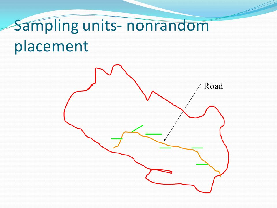 Sampling units- nonrandom placement Road