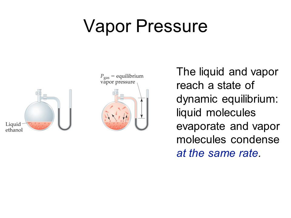 Vapor Pressure The liquid and vapor reach a state of dynamic equilibrium: liquid molecules evaporate and vapor molecules condense at the same rate.