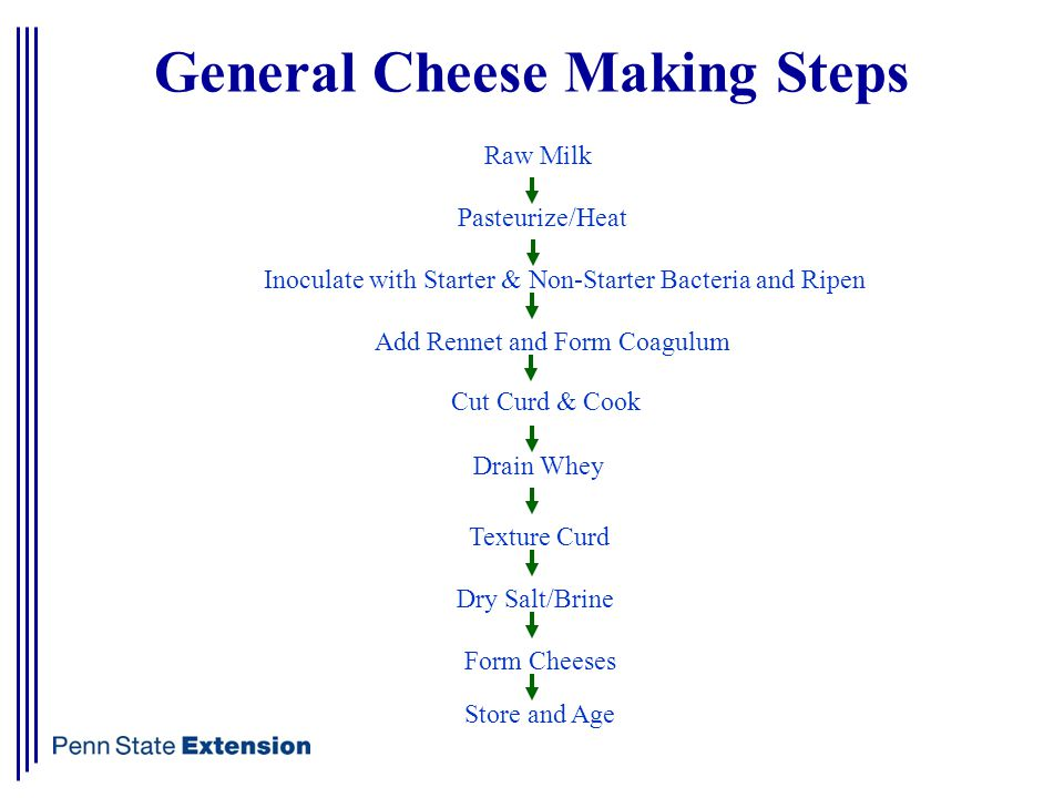 General Cheese Making Steps Raw Milk Pasteurize/Heat Inoculate with Starter & Non-Starter Bacteria and Ripen Add Rennet and Form Coagulum Cut Curd & Cook Drain Whey Texture Curd Dry Salt/Brine Form Cheeses Store and Age