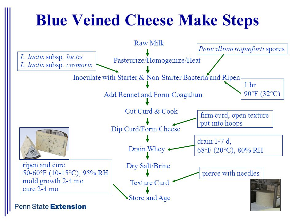 Blue Veined Cheese Make Steps Raw Milk Pasteurize/Homogenize/Heat Inoculate with Starter & Non-Starter Bacteria and Ripen Add Rennet and Form Coagulum Cut Curd & Cook Dip Curd/Form Cheese Texture Curd Dry Salt/Brine Drain Whey Store and Age L.