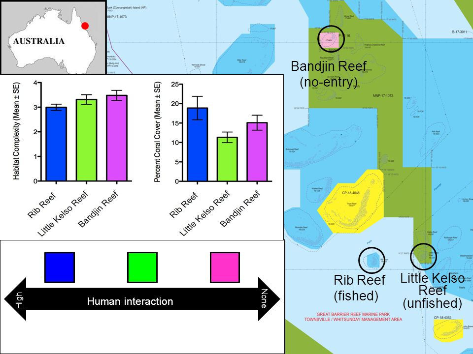 Rib Reef (fished) Bandjin Reef (no-entry) Little Kelso Reef (unfished) Human interaction High None