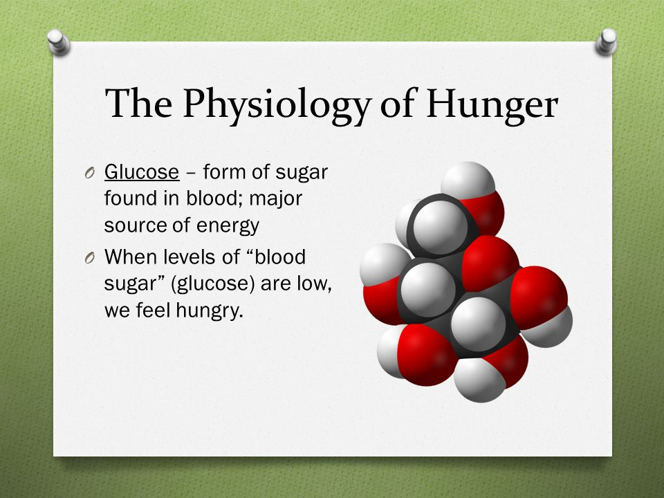 The Physiology of Hunger O Glucose – form of sugar found in blood; major source of energy O When levels of blood sugar (glucose) are low, we feel hungry.