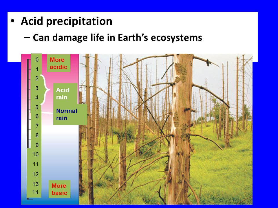 Acid precipitation – Can damage life in Earth's ecosystems 0101 2323 4545 6767 8989 10 11 12 13 14 More acidic Acid rain Normal rain More basic