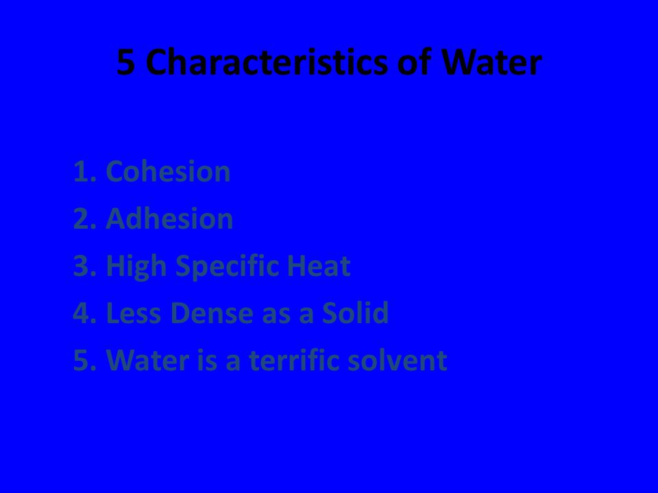 5 Characteristics of Water 1. Cohesion 2. Adhesion 3. High Specific Heat 4. Less Dense as a Solid 5. Water is a terrific solvent