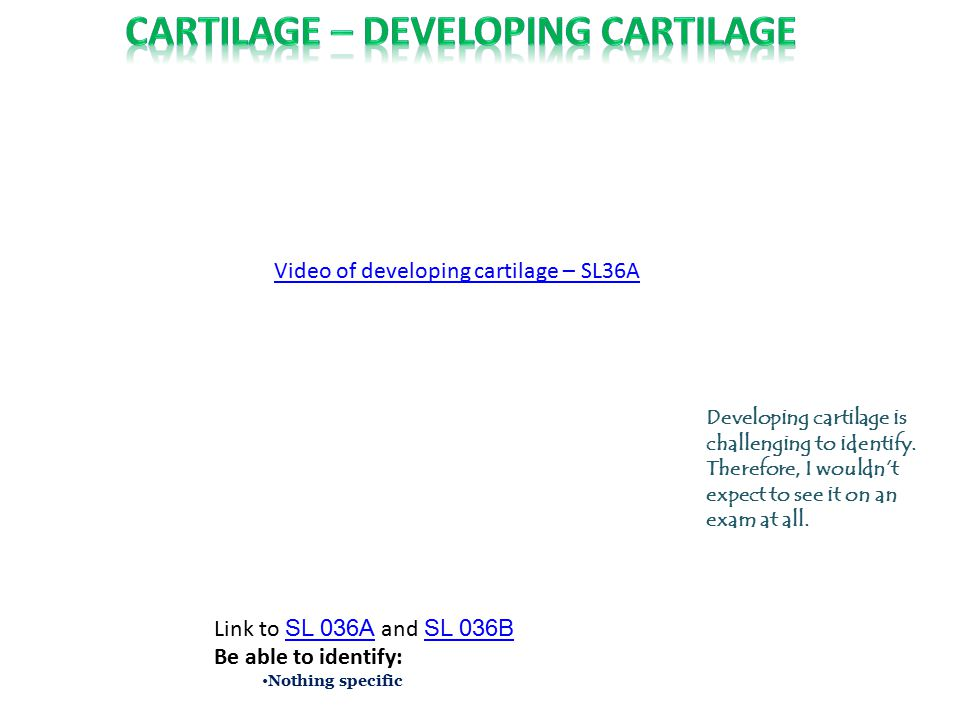 Elastic cartilage is essentially hyaline cartilage + elastic fibers added to the matrix.