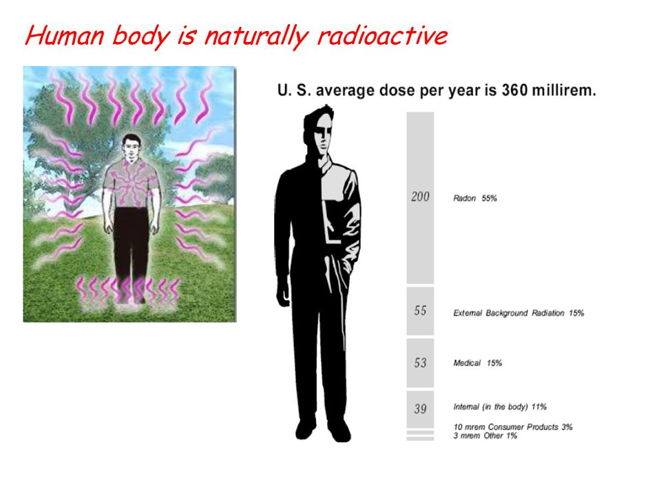 Human body is naturally radioactive