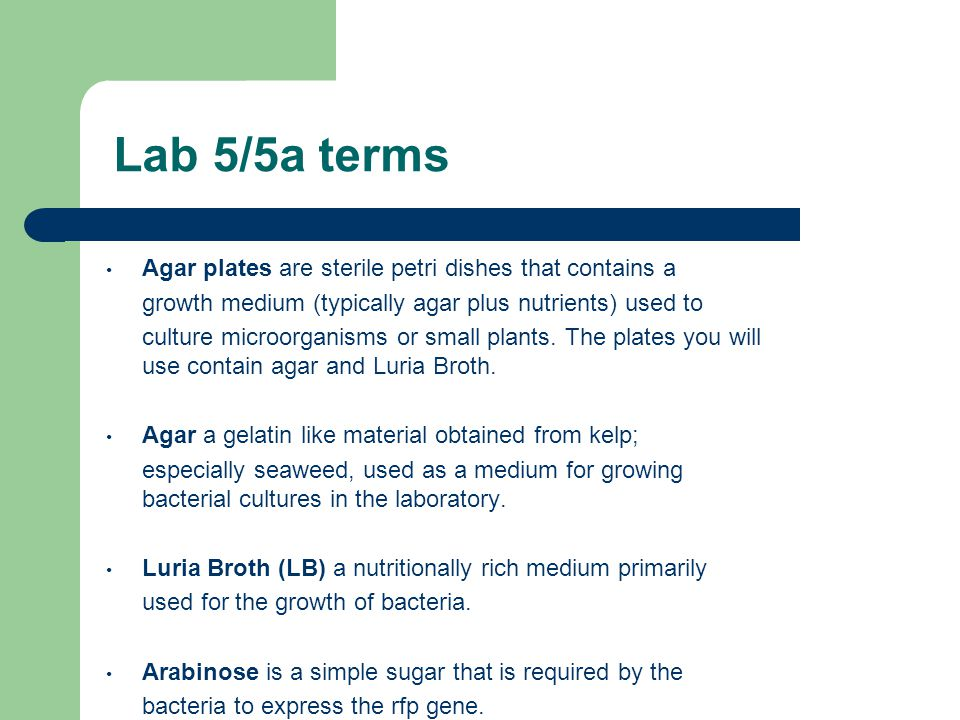 Lab 5/5a terms Agar plates are sterile petri dishes that contains a growth medium (typically agar plus nutrients) used to culture microorganisms or small plants.