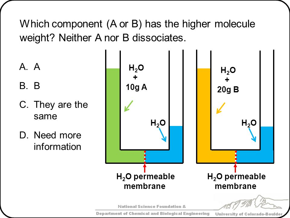 Which component (A or B) has the higher molecule weight? Neither A nor B dissociates. A.A B.B C.They are the same D.Need more information H 2 O permea