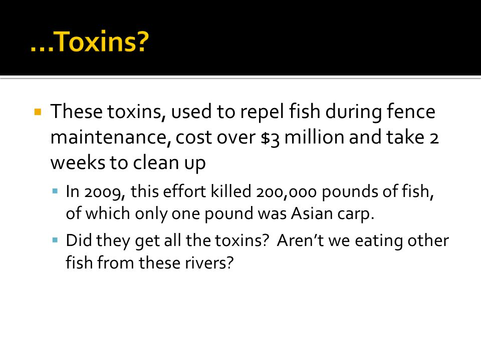  These toxins, used to repel fish during fence maintenance, cost over $3 million and take 2 weeks to clean up  In 2009, this effort killed 200,000 pounds of fish, of which only one pound was Asian carp.