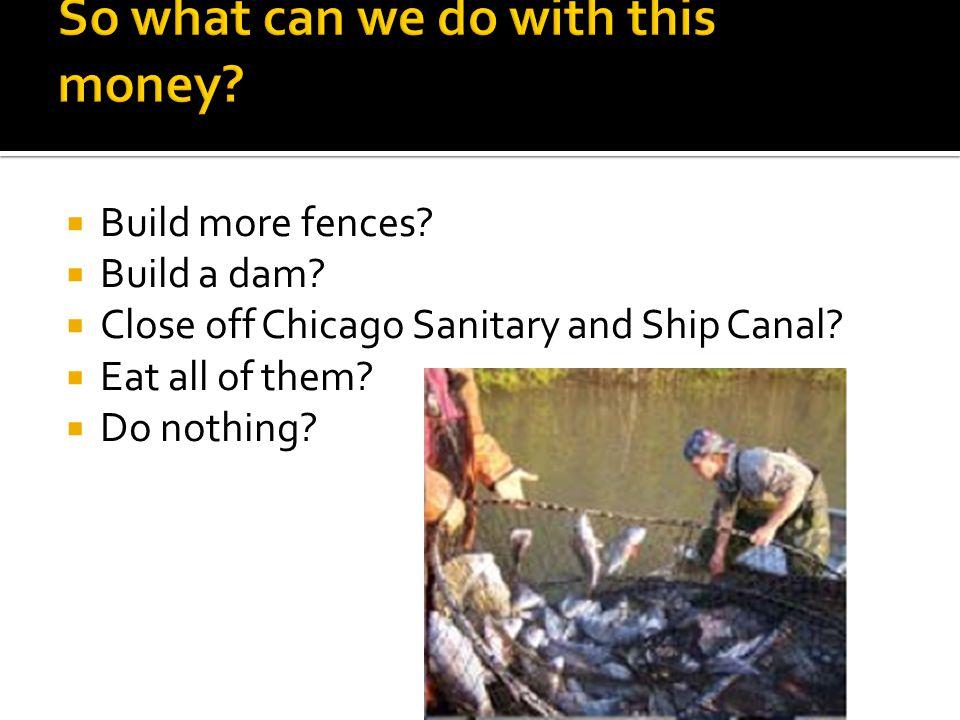  Build more fences.  Build a dam.  Close off Chicago Sanitary and Ship Canal.