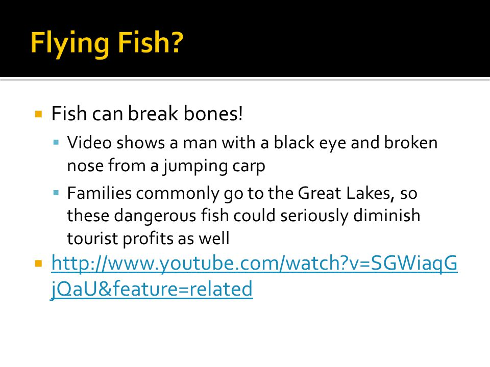  Fish can break bones!  Video shows a man with a black eye and broken nose from a jumping carp  Families commonly go to the Great Lakes, so these d