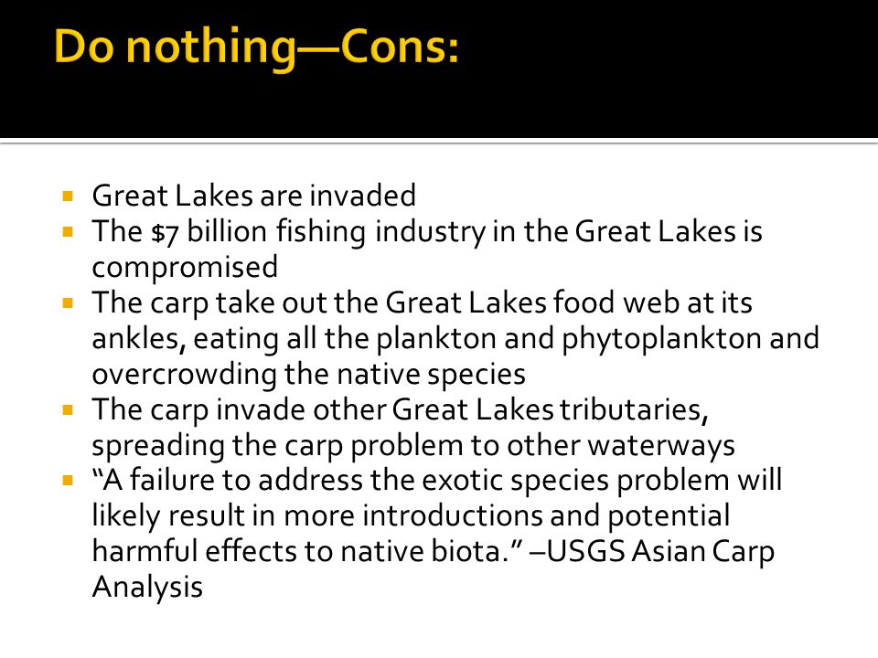  Great Lakes are invaded  The $7 billion fishing industry in the Great Lakes is compromised  The carp take out the Great Lakes food web at its ankl