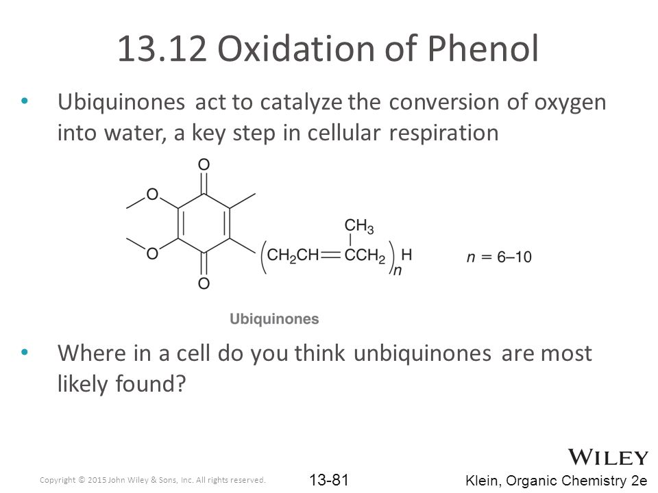 Ubiquinones act to catalyze the conversion of oxygen into water, a key step in cellular respiration Where in a cell do you think unbiquinones are most likely found.