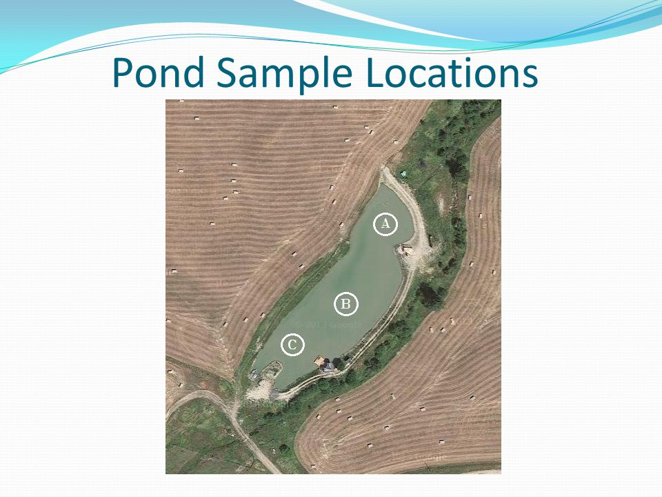 Pond Sample Locations
