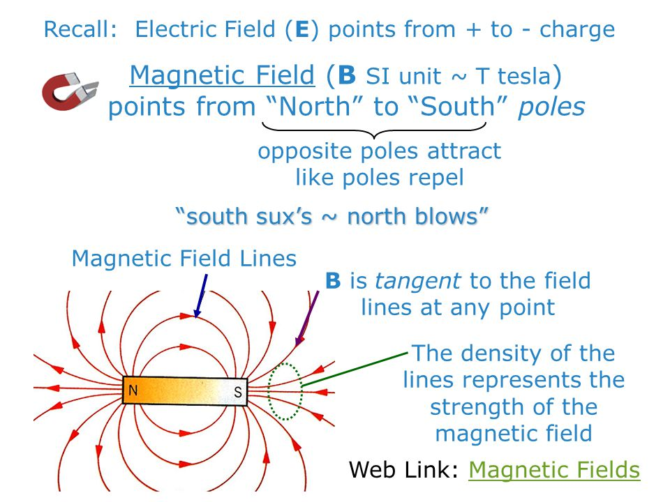 "Magnetic Field (B SI unit ~ T tesla ) points from ""North"" to ""South"" poles Recall: Electric Field (E) points from + to - chargeopposite poles attract"