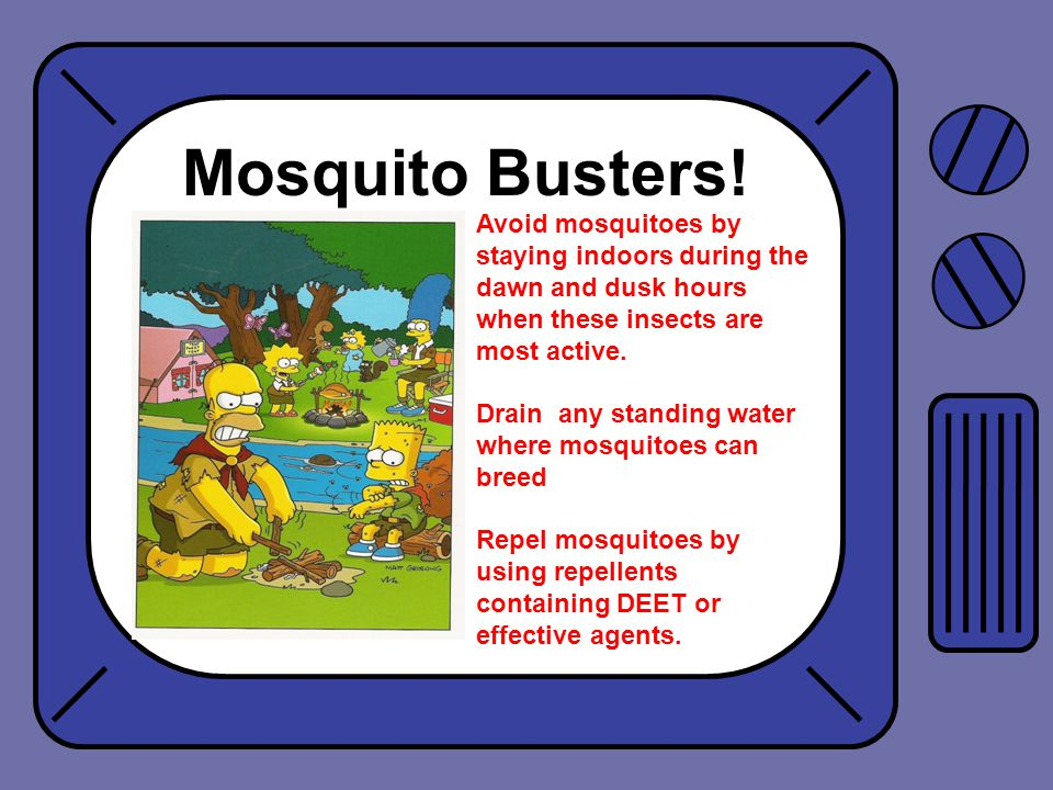 Mosquito Busters.