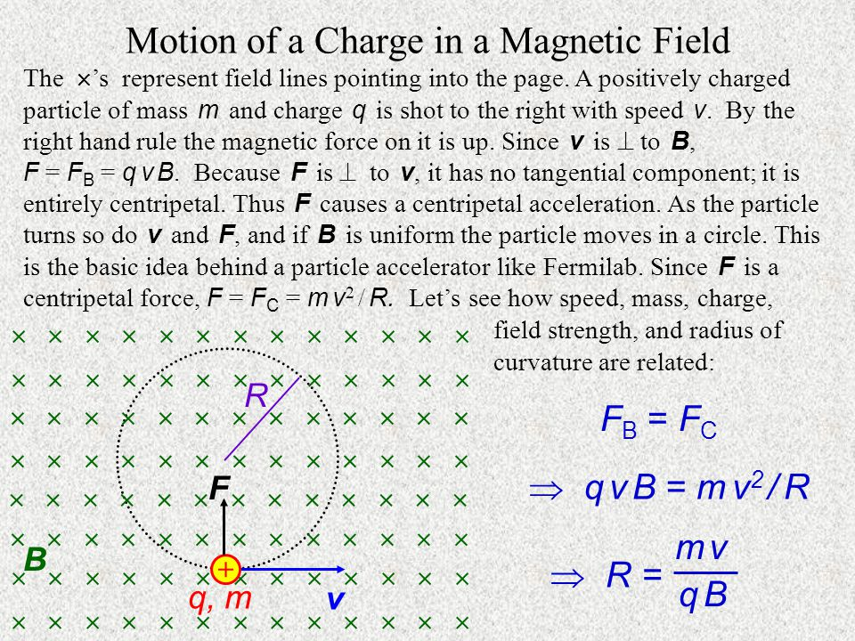 Motion of a Charge in a Magnetic Field The  's represent field lines pointing into the page.