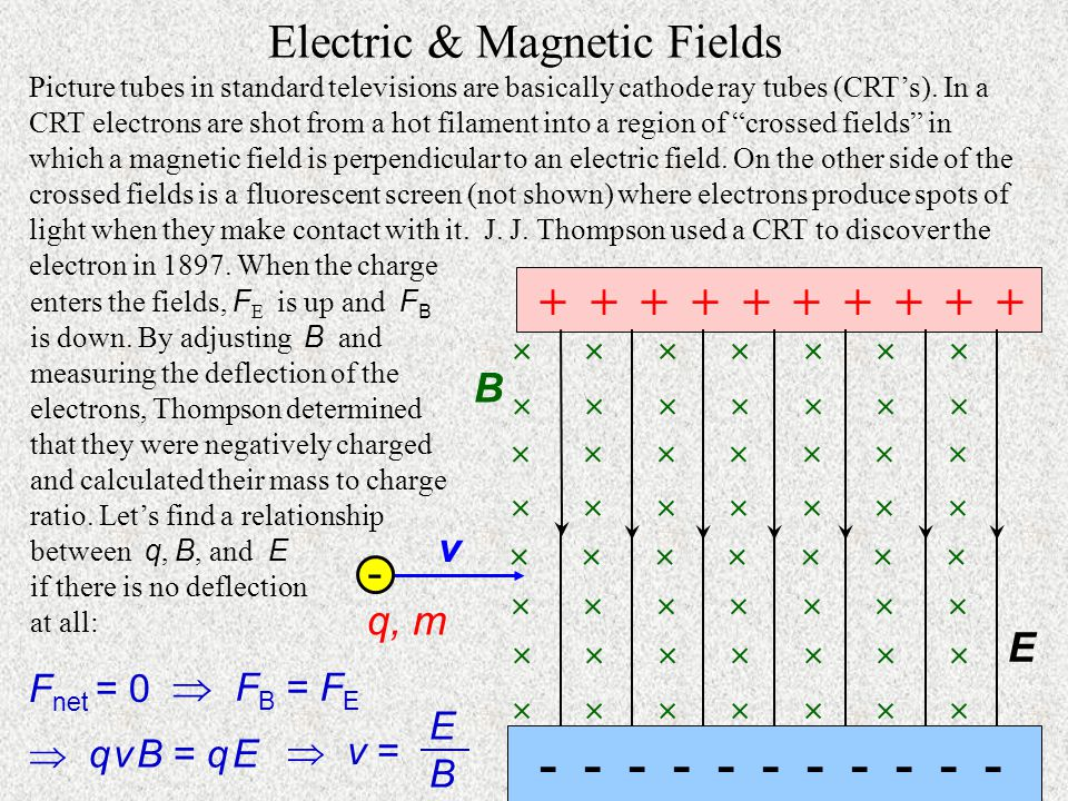 Electric & Magnetic Fields v q, m        B + + + + + + + + + + - - - - - - - - - - - E Picture tubes in standard televisions are basically cathode ray tubes (CRT's).