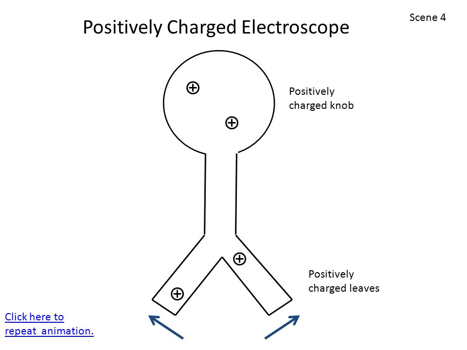 Positively charged leaves Positively charged knob Positively Charged Electroscope Scene 4 Click here to repeat animation.