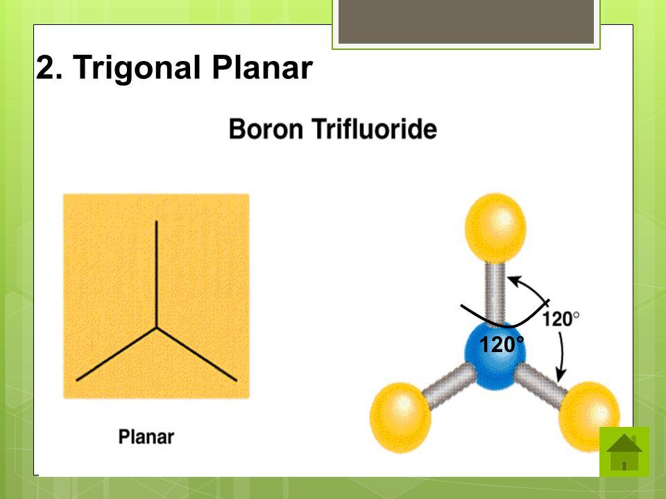 120° 2. Trigonal Planar