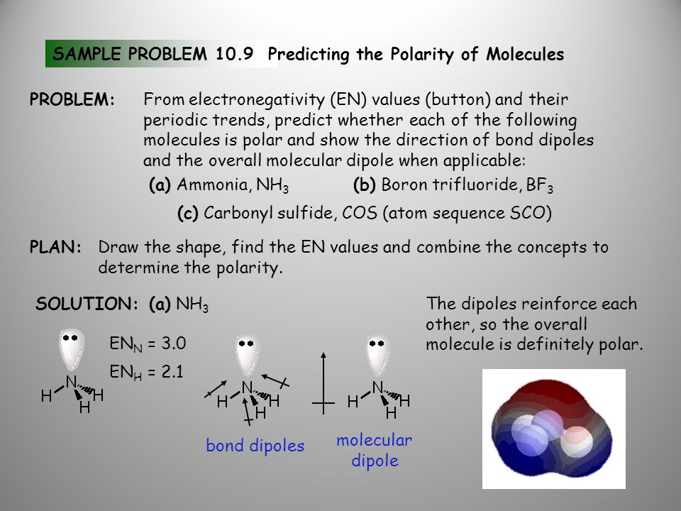 SAMPLE PROBLEM 10.9Predicting the Polarity of Molecules (a) Ammonia, NH 3 (b) Boron trifluoride, BF 3 (c) Carbonyl sulfide, COS (atom sequence SCO) PROBLEM:From electronegativity (EN) values (button) and their periodic trends, predict whether each of the following molecules is polar and show the direction of bond dipoles and the overall molecular dipole when applicable: PLAN:Draw the shape, find the EN values and combine the concepts to determine the polarity.