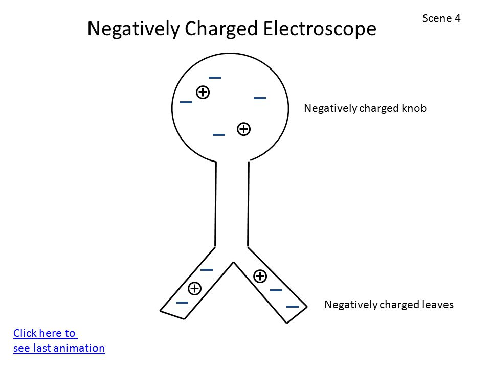 Negatively Charged Electroscope Scene 4 Click here to see last animation Negatively charged leaves Negatively charged knob