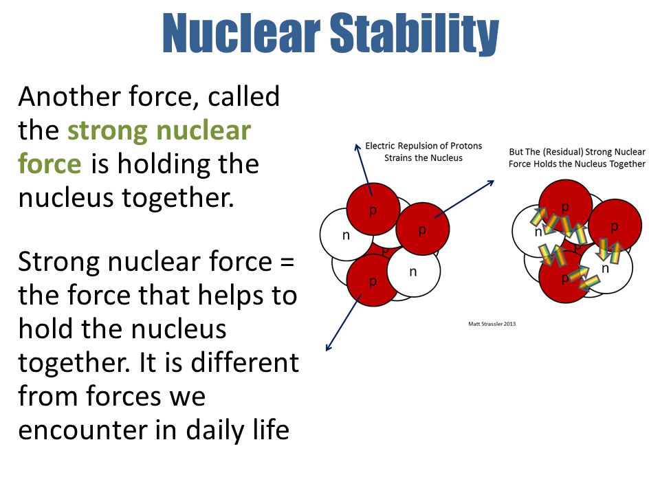 Nuclear Stability Another force, called the strong nuclear force is holding the nucleus together.