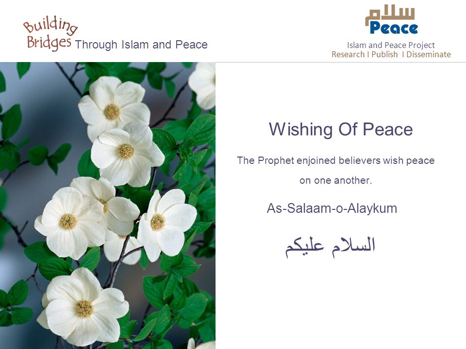 As-Salaam-o-Alaykum السلام عليكم Through Islam and Peace The Prophet enjoined believers wish peace on one another.