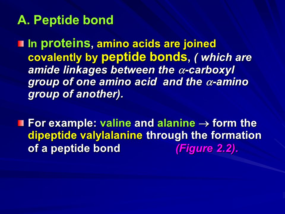 A. Peptide bond In proteins, amino acids are joined covalently by peptide bonds, ( which are amide linkages between the  -carboxyl group of one amino