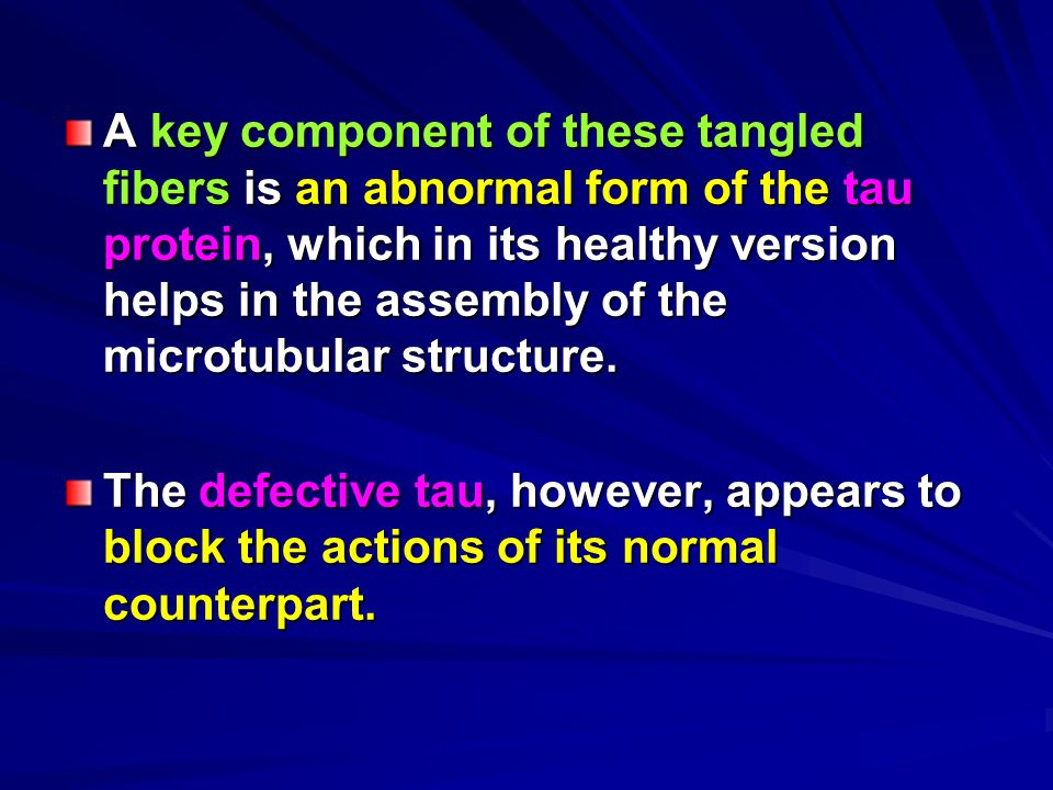 A key component of these tangled fibers is an abnormal form of the tau protein, which in its healthy version helps in the assembly of the microtubular