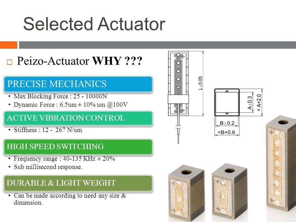 Selected Actuator  Peizo-Actuator WHY ??.