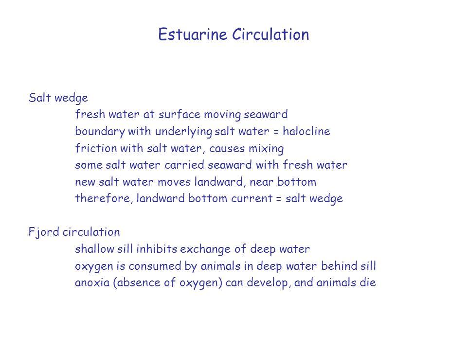 Estuarine Circulation Salt wedge fresh water at surface moving seaward boundary with underlying salt water = halocline friction with salt water, cause