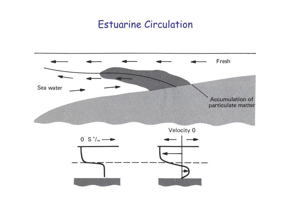 Estuarine Circulation