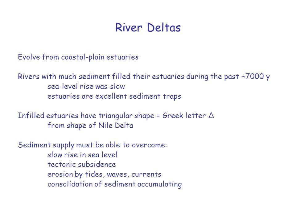 River Deltas Evolve from coastal-plain estuaries Rivers with much sediment filled their estuaries during the past ~7000 y sea-level rise was slow estu