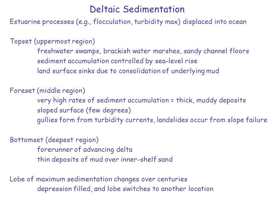 Deltaic Sedimentation Estuarine processes (e.g., flocculation, turbidity max) displaced into ocean Topset (uppermost region) freshwater swamps, bracki