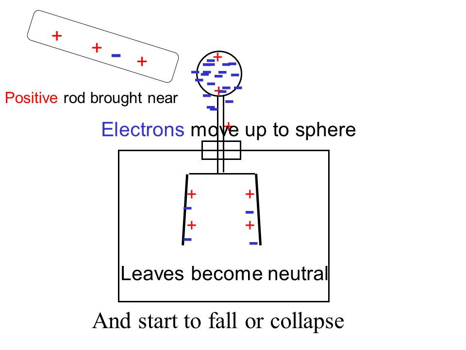 + + + - - - - - - ++ ++ - - - - - - - - - - - - - - - - - - - - + + + Positive rod brought near Electrons move up to sphere Leaves become neutral And