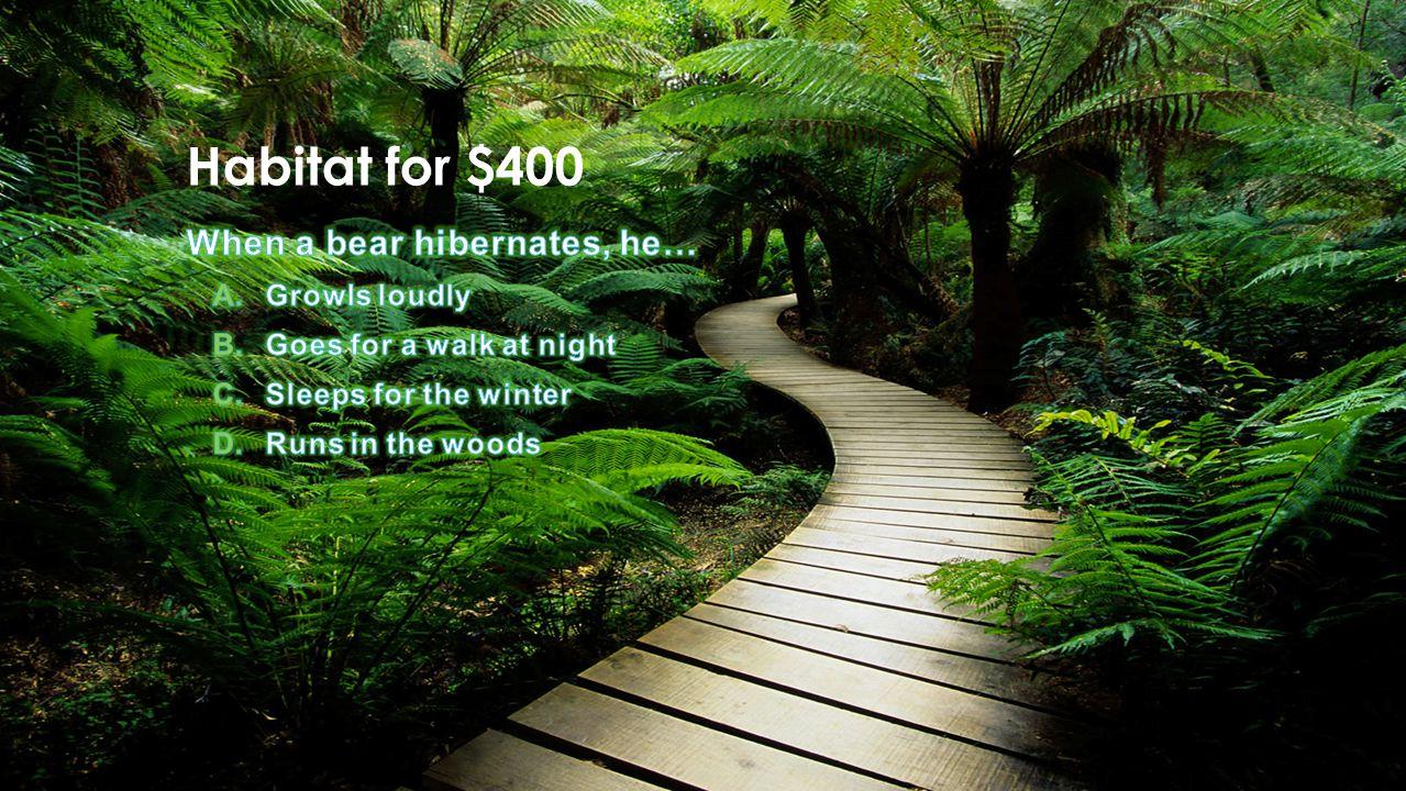 Habitat for $400