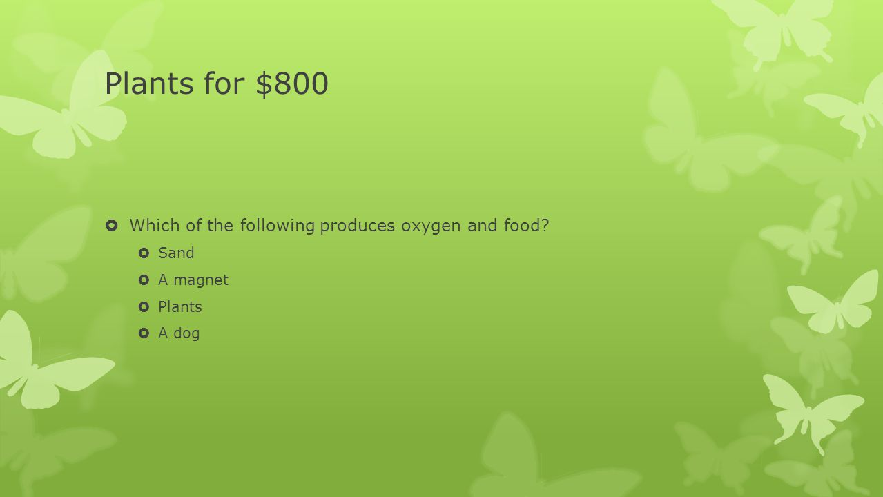Plants for $800  Which of the following produces oxygen and food?  Sand  A magnet  Plants  A dog