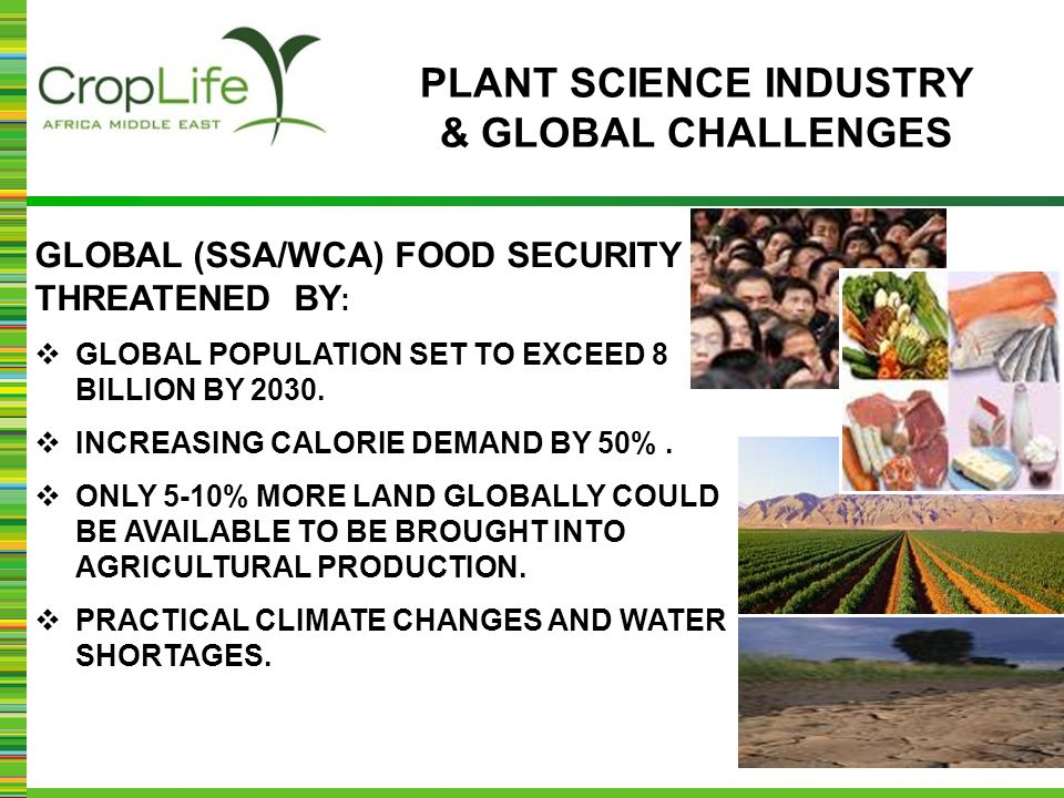 GLOBAL (SSA/WCA) FOOD SECURITY THREATENED BY :  GLOBAL POPULATION SET TO EXCEED 8 BILLION BY 2030.  INCREASING CALORIE DEMAND BY 50%.  ONLY 5-10% M