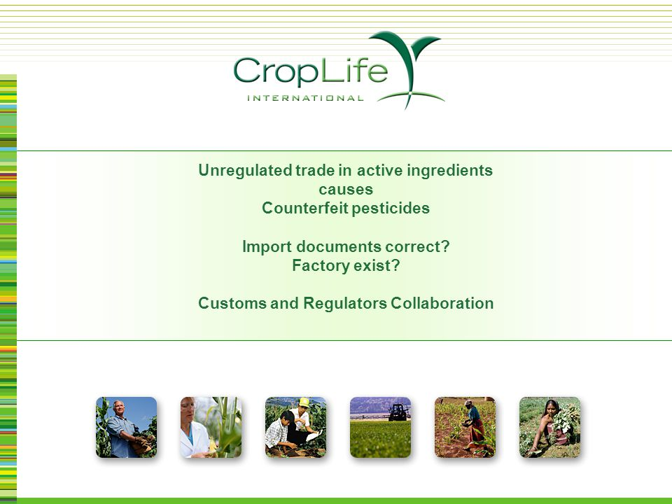 Increase of CF global trade Seizure quantities higher No proper storage/destruction Investigations difficult International Trade of Counterfeit ( CF ) Pesticides