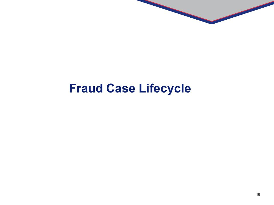 16 Fraud Case Lifecycle